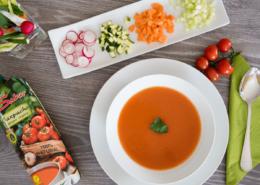 tetra pak gazpacho con verdure tagliate pronto per essere degustato